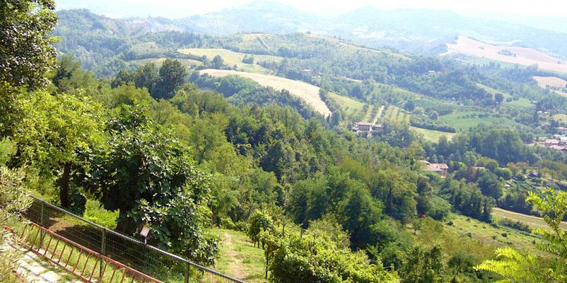 Agriturismo in provincia di bologna emilia romagna - Agriturismo con piscina bologna ...